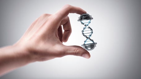 a hand holding a double helix